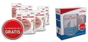 Royal Canin Indoor Feline 2 kg