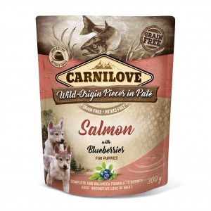 CARNILOVE DOG POUCH SALMON & BLUEBERRIES PUPPIEs 300 g