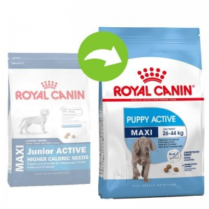 Royal Canin Maxi Puppy/Junior Active 15 kg